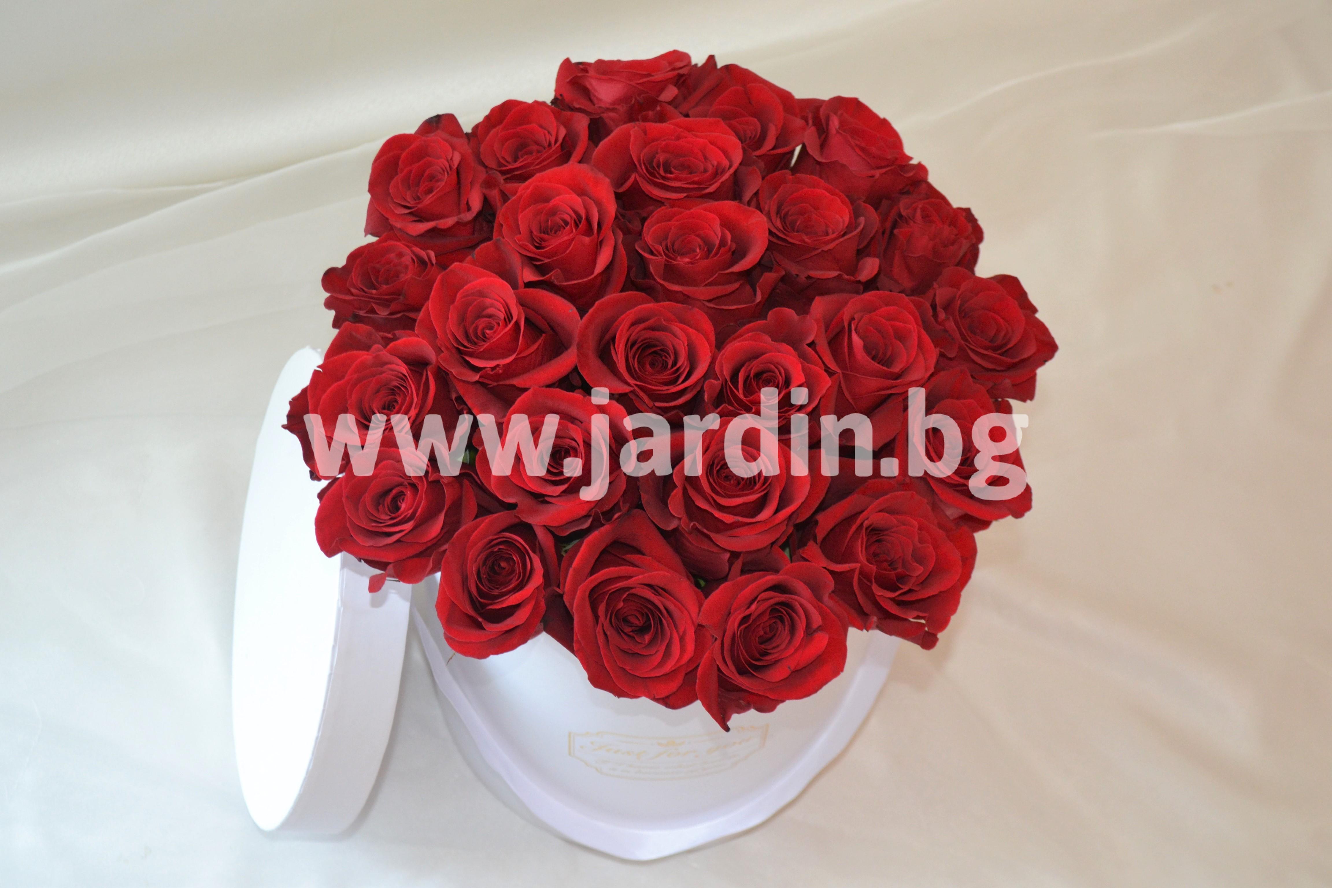 червени-рози-в-кутия (3)